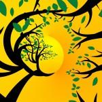 tree-710660_1280